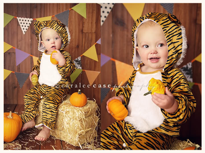Caralee Case Photography halloween mini sessions Idaho Falls, ID
