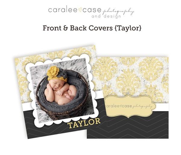 Accordion Mini Taylor closeup