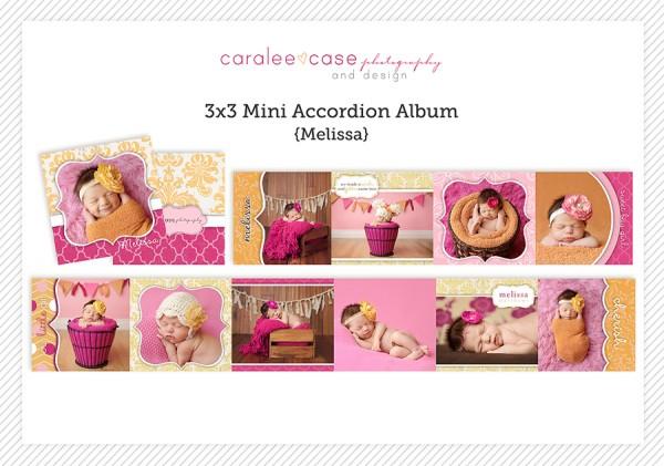 Accordion Mini Album Template Melissa