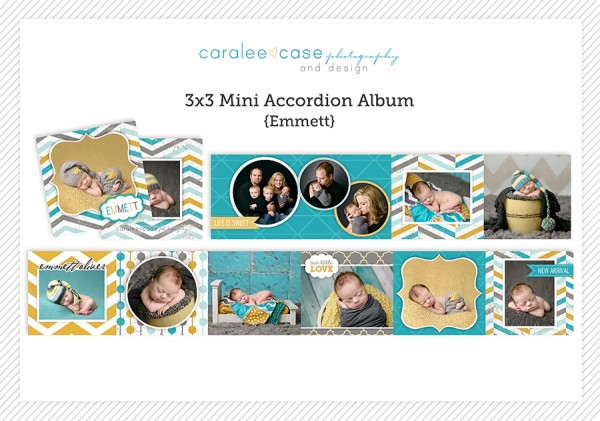 Accordion Mini Album Template Emmett