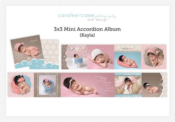 Accordion Mini Album Template Kayla