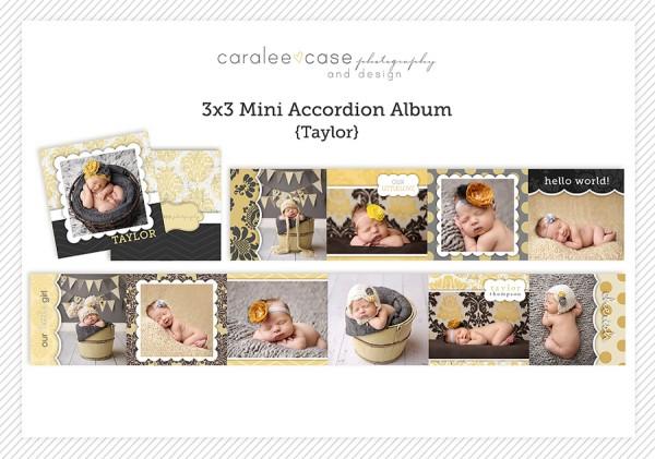 Accordion Mini Album Template Taylor