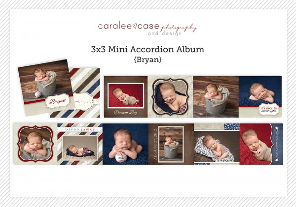 Accordion Mini Album Template Bryan