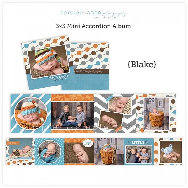 Accordion Mini Album Template Blake lg
