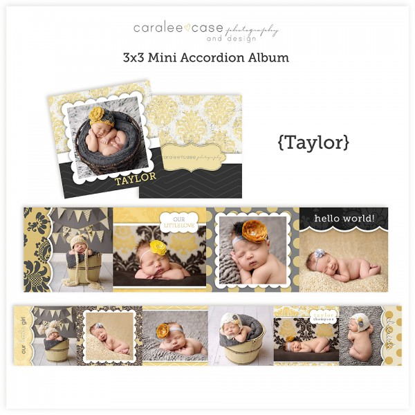 Accordion Mini Album Template Taylor lg