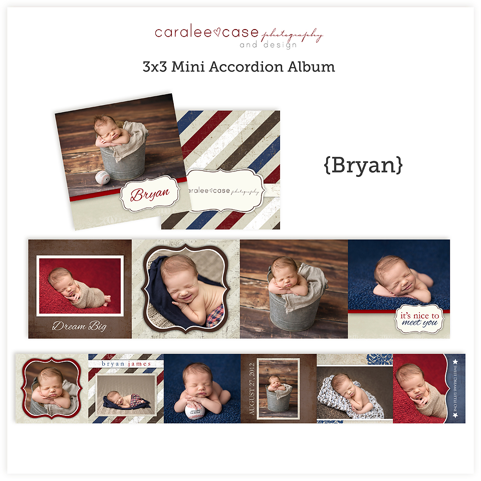 Accordion Mini Album Template Bryan sq