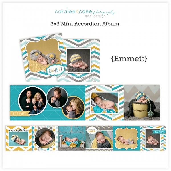 Accordion Mini Album Template Emmett lg