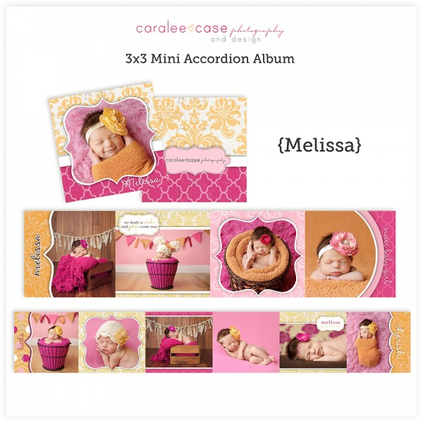 Accordion Mini Album Template Melissa lg