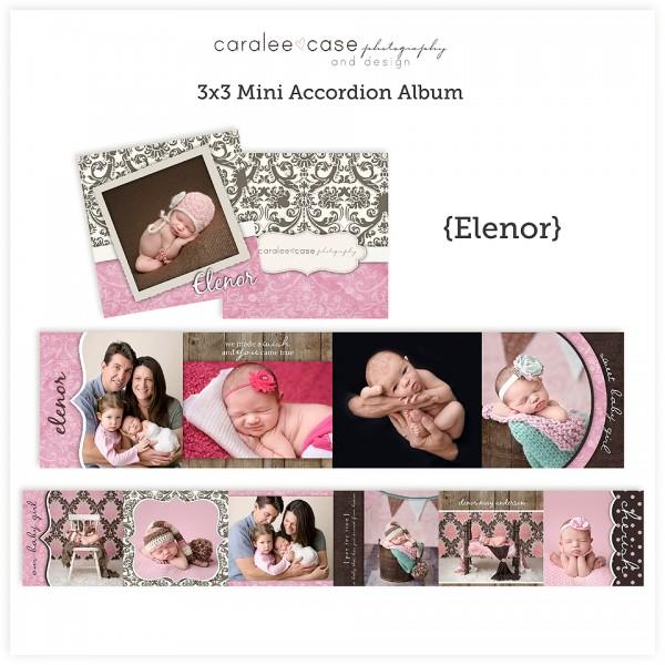 Accordion Mini Album Template Elenor lg