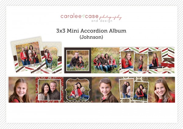 Accordion Mini Album Template Johnson