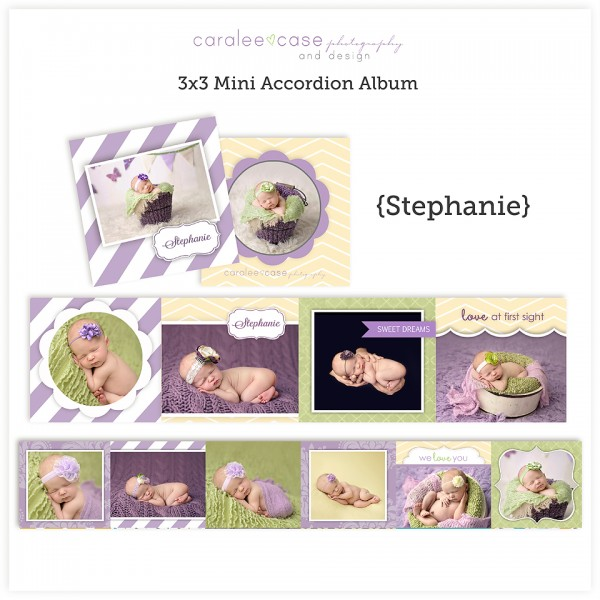 Accordion Mini Album Template Stephanie lg
