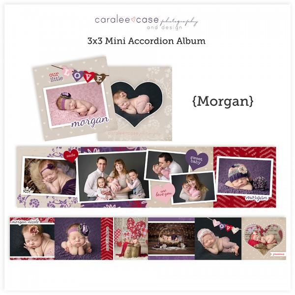 Accordion Mini Album Template Morgan