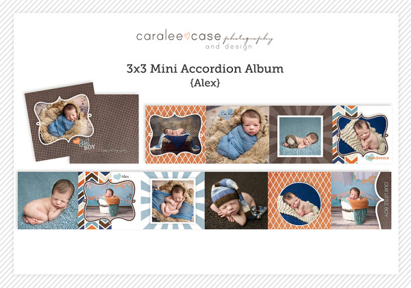 Mini Accordion Album {Alex}