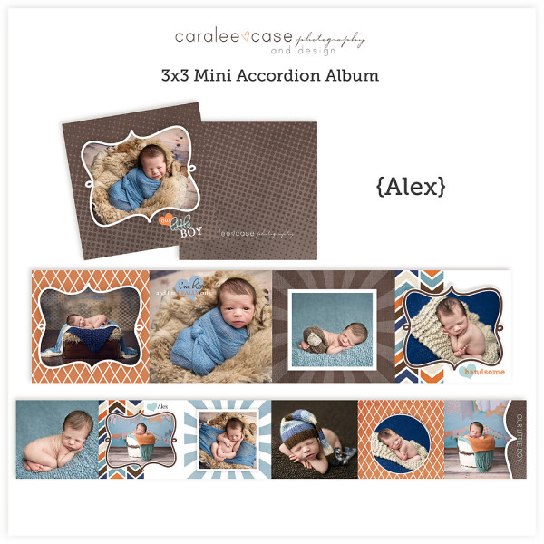 Mini Accordion Album {Alex} sq