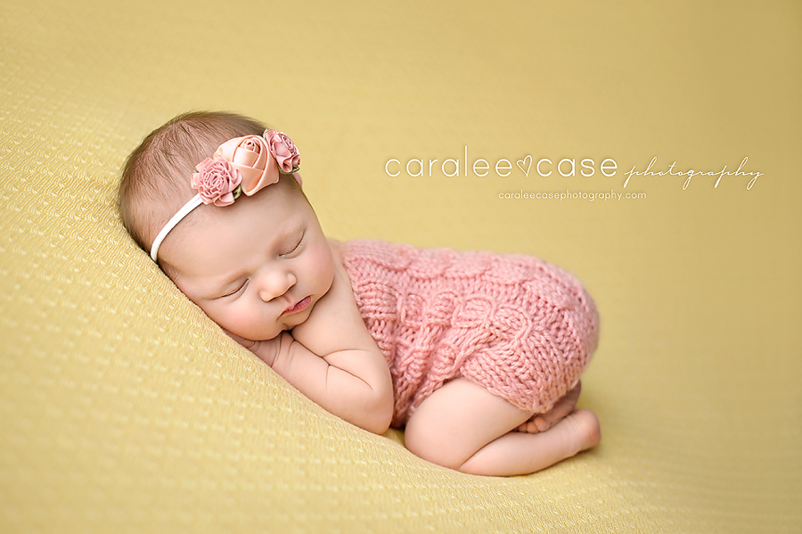Paislee idaho falls rigby id newborn infant baby photographer