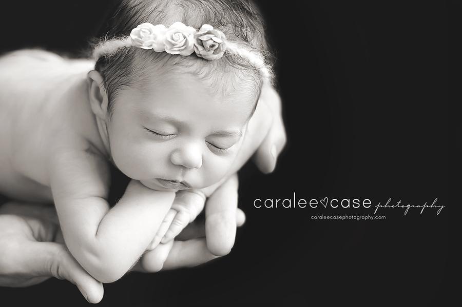 Id newborn infant baby photographer caralee case photography
