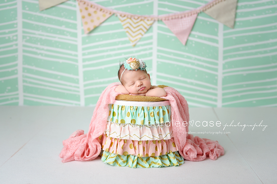 Pocatello, ID Newborn Infant Baby Photographer ~ Caralee Case Photography