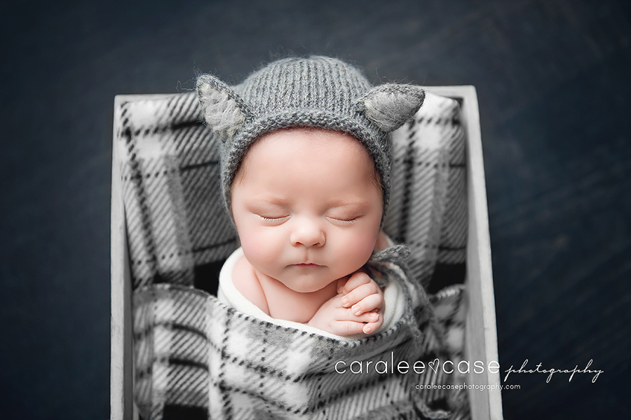 Ammon, ID Newborn Infant Baby Photographer ~ Caralee Case Photography