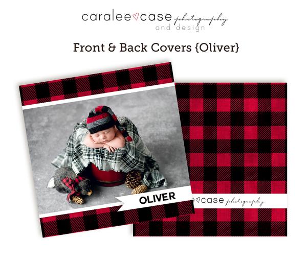 Accordion Oliver Closeup