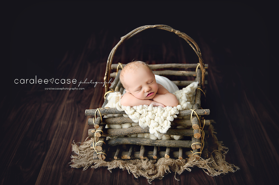 Idaho Falls, ID Newborn Infant Baby Studio Portrait Photographer ~ Caralee Case Photography