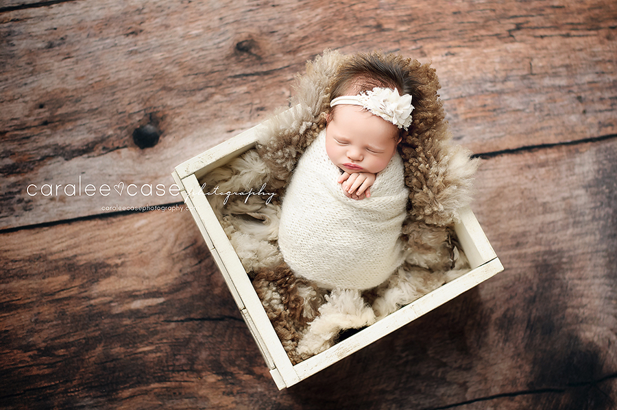 Rigby, Idaho Newborn Infant Baby Photographer ~ Caralee Case Photography