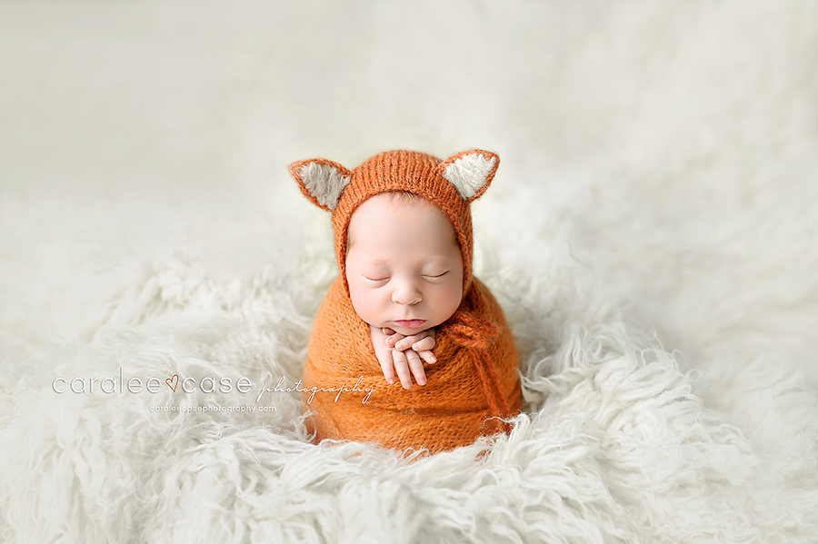 Driggs Idaho Newborn Infant Baby studio portait Photography ~ Caralee Case Photography