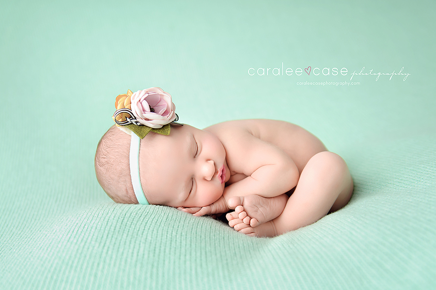 Shelley Idaho newborn infant baby studio portrait photographer ~ Caralee Case Photography