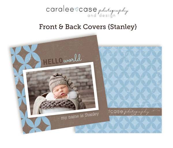 Template Mini Accordion Stanley Caralee Case Photography closeup