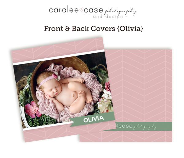Olivia Mini Accordion AlbumTemplate Close up Caralee Case Photography