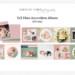 Olivia Mini Accordion AlbumTemplate Caralee Case Photography thumbnail