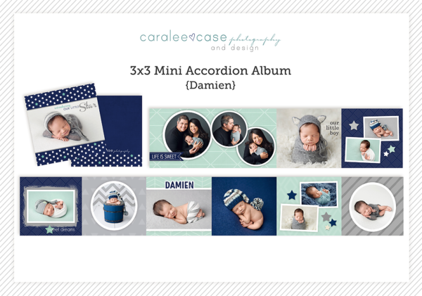Damien accordion album template Caralee Case Photography