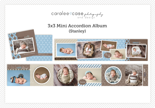 Template Mini Accordion Stanley Caralee Case Photography