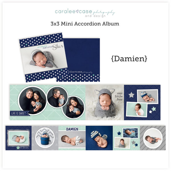 Damien accordion album template sq Caralee Case Photography