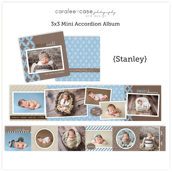 Template Mini Accordion Stanley Caralee Case Photography sq