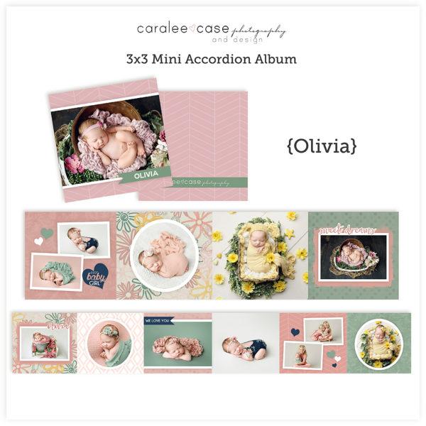 Oliva Mini Accordion Album Template Sq Caralee Case Photography