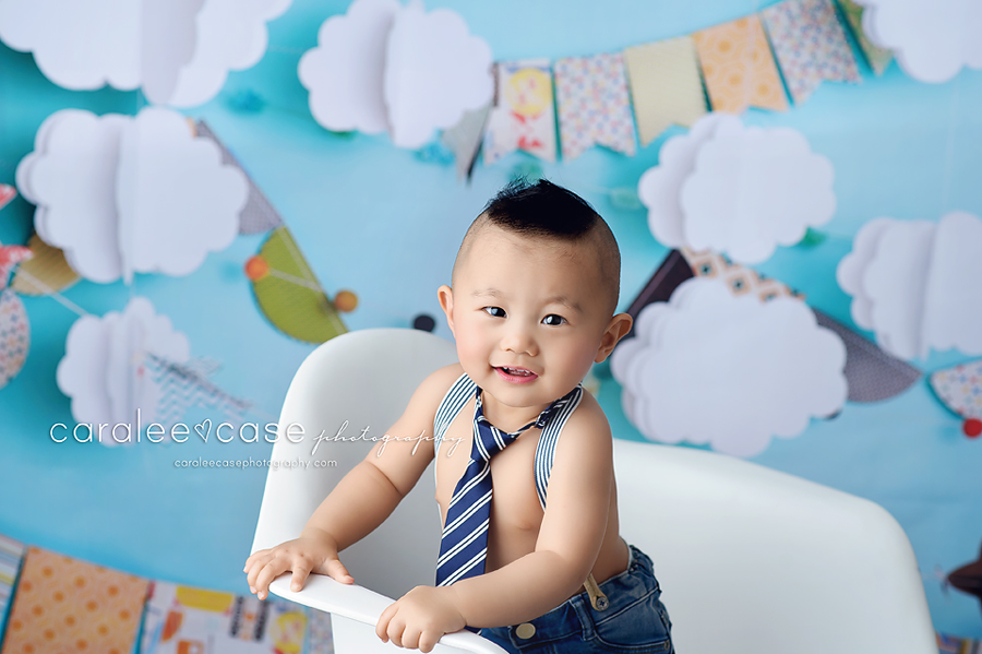 Burley Idaho Child Baby Cake Smash Birthday Studio Photographer ~ Caralee Case Photography