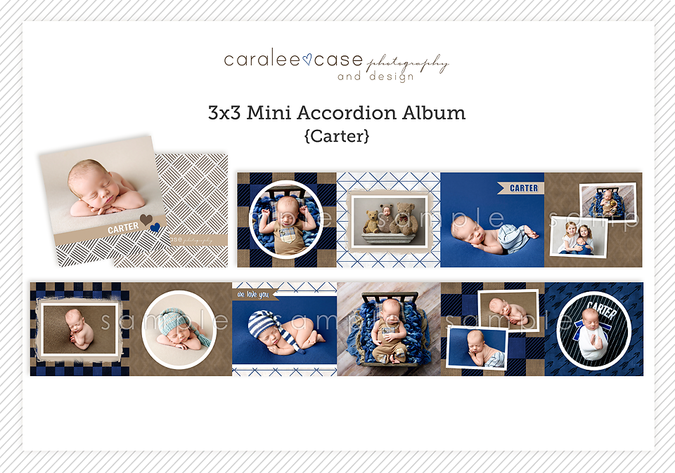 Caralee Case Photography Newborn Posing Lighting Editing Wrapping WORKSHOP 2020 California workshops
