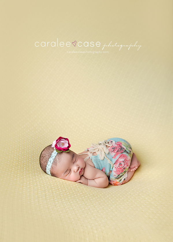 Caralee Case Photography Newborn Posing Lighting Workshop Teacher Mentor