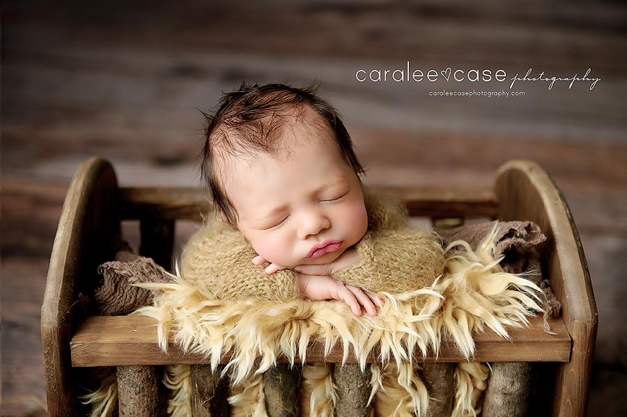 Caralee Case Photography Newborn Posing Lighting Editing WORKSHOPS 2020 Kenosha Wisconsin Chicago Milwaukee workshop