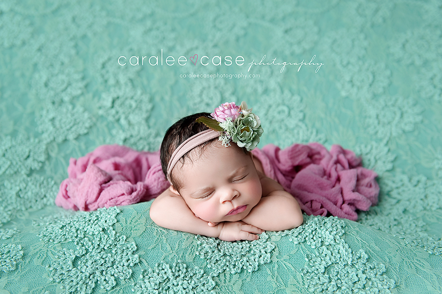 Caralee Case Photography Newborn Posing Workshop, Lighting, editing and Child Photographer Workshops