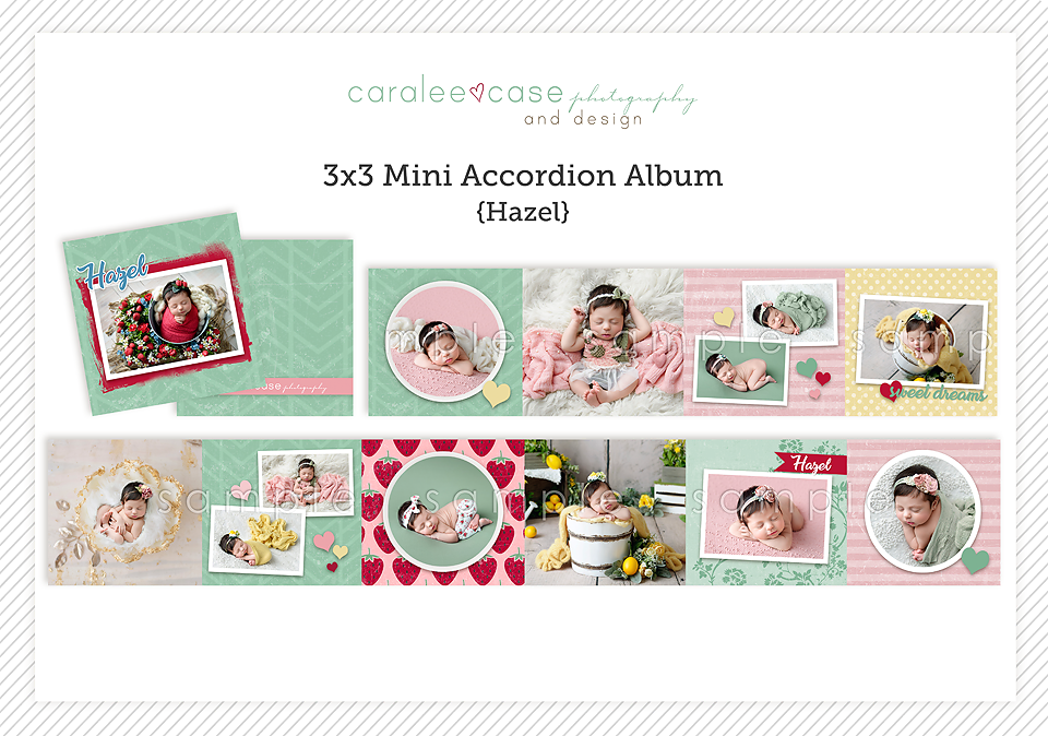 Caralee Case Photography ~ Idaho Falls, ID Newborn Infant Baby Photographer Posing Workshops Editing Mini Album Templates Template Store