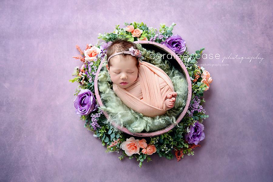 Pocatello Idaho Newborn Infant Baby Photographer ~ Caralee Case Photography