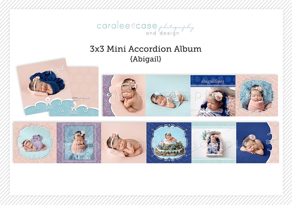 Caralee Case Photography Newborn Posing Lighting EditingWORKSHOPS 2020 mini accordion album template