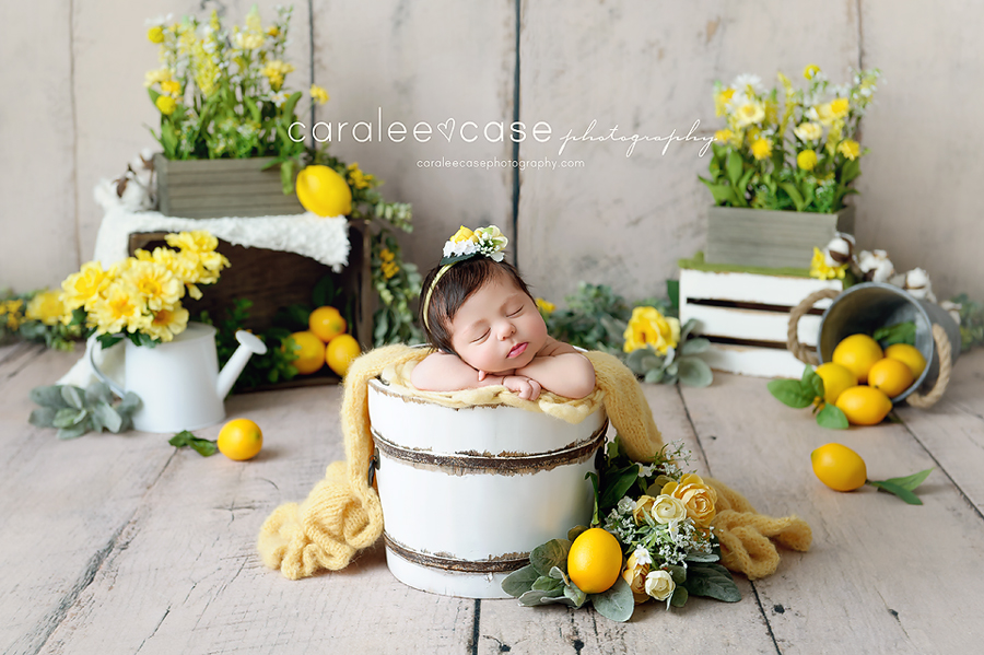 Pocatello Idaho Newborn Infant Baby Posing Studio Portrait Photographer ~ Caralee Case Photography