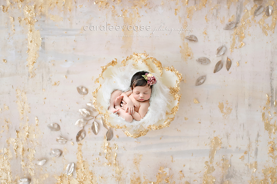 Chubbuck Idaho Newborn Infant Baby Posing Studio Portrait Photographer ~ Caralee Case Photography