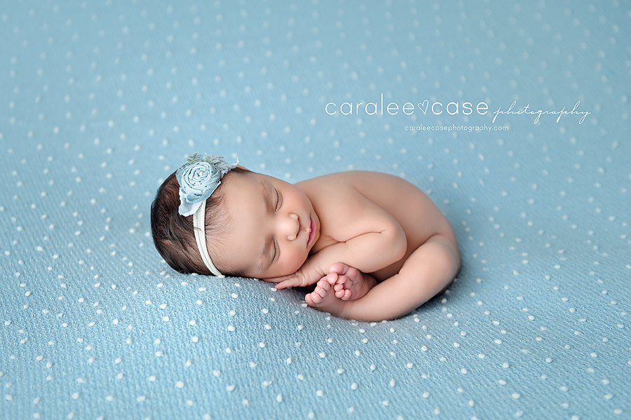 Caralee Case Photography Newborn Posing Lighting Editing WORKSHOPS 2020 Long Island New York NYC
