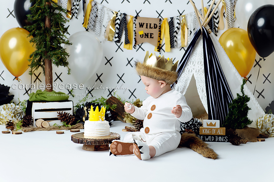 Idaho Falls, ID Baby Child Toddler 1 one year birthday cake smash photographer ~ Caralee Case Photography