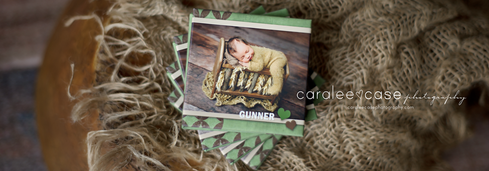 Caralee Case Photography Newborn Posing Lighting EditingWORKSHOPS 2020 mini accordion album template